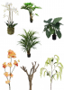 Het Opmaken van Vazen, Schalen & Potten